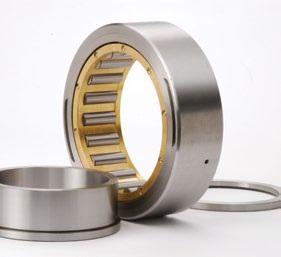 Scheerer bearings